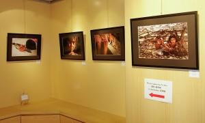 TY Ooi's Exhibits
