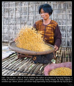 A Khmer lady separating rice husk