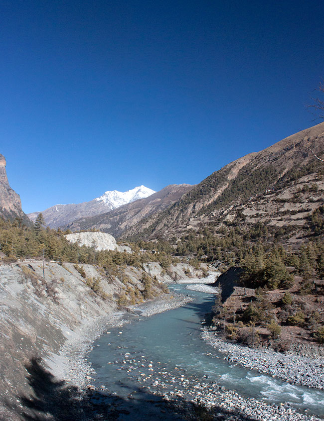 On the Manang Trek
