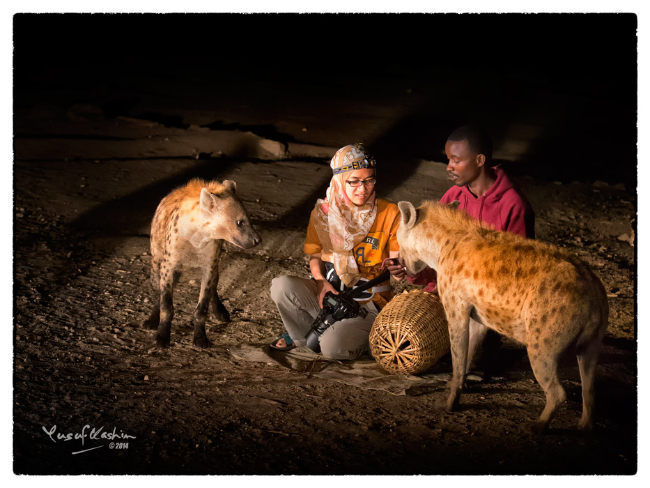 Sally, one of the participants of our PhotoSafari to Ethiopia, was brave enough to go up and sit next to the Hyena Man as he fed the wild Hyenas.