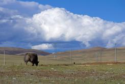 Tibet_002