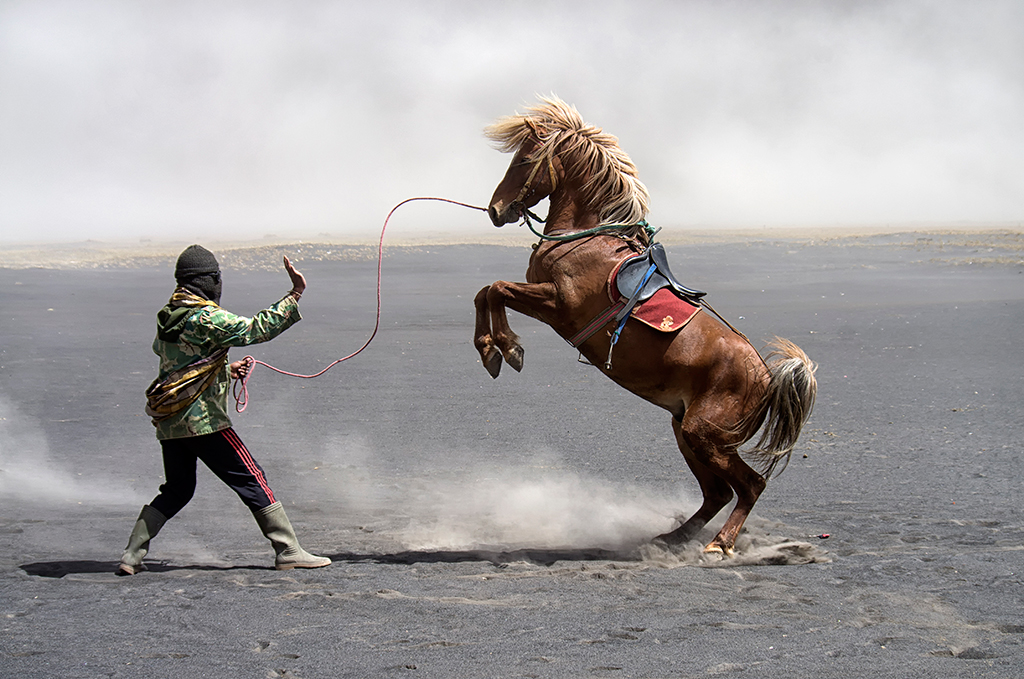 Horse riding around the valley floor is a common form of entertainment at Mt. Bromo