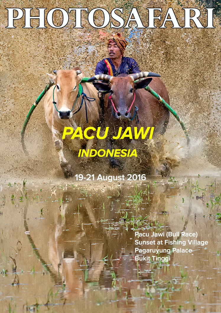 This is Pacu Jawi Event was organised for our members by popular demand. It is held in August 2016